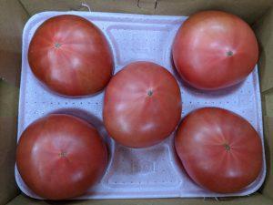 野菜の豆知識 part1 「トマト」